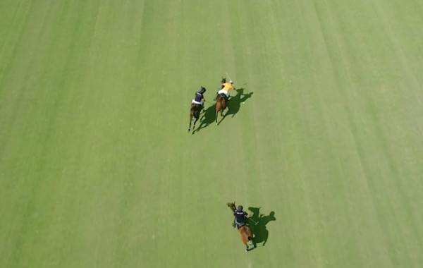 Windsor Polo Club
